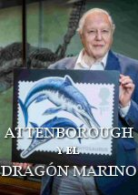 Attenborough y el Dragon Marino