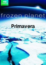 Frozen Planet: Primavera