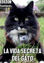 La Vida Secreta del Gato