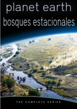 Bosques Estacionales